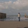 mare-lago-lesina-istmo-video-sergio-grillo-maria-sica-ambiente-foggia-Società