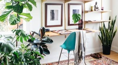 arredamento-piante-profumo-verde-idee-casa-Società