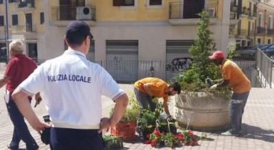 fioriere-piazza-municipio-foggia-commento-fondazione-apulia-felix-Società
