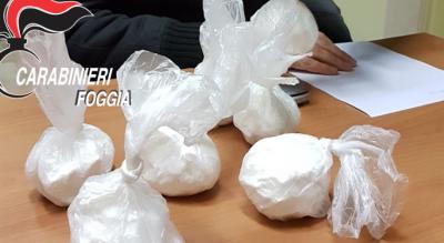 gargano-foggia-vieste-scoperta-cocaina-nascosta-bosco-Cronaca