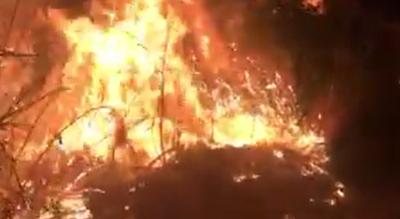 incendio-oasi-lago-salso-manfredonia-allarme-legambiente-puglia-Cronaca