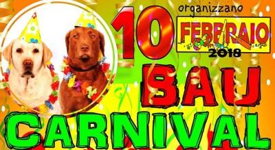 foggia-animali-cani-trovatelli-bau-carnival-piper-corso-giannone-festa-Società