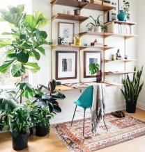 Arredamento piante profumo verde idee casa for Arredare con le lanterne